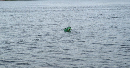 Emily the Miller Lake Dragon, <i>courtesy of Krista Snow</i>