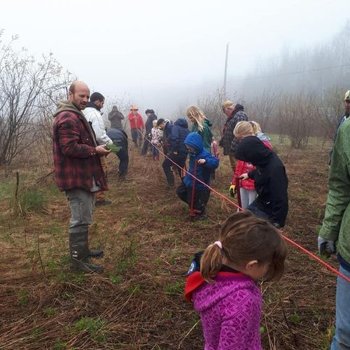 Scouts Canada Scouts planting Trees as part of the annual ScoutTree campaign