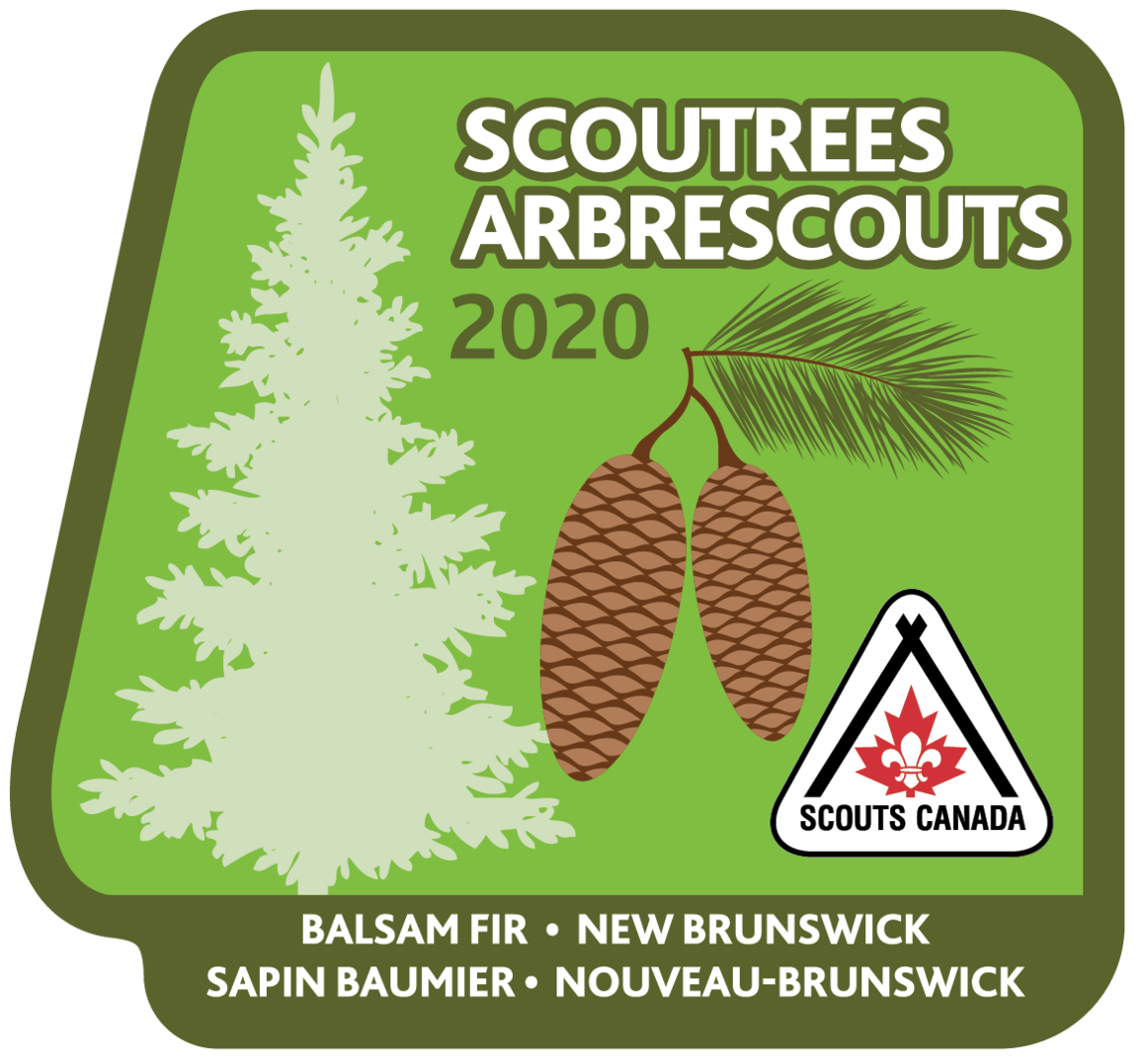 Scoutrees Crest 2020