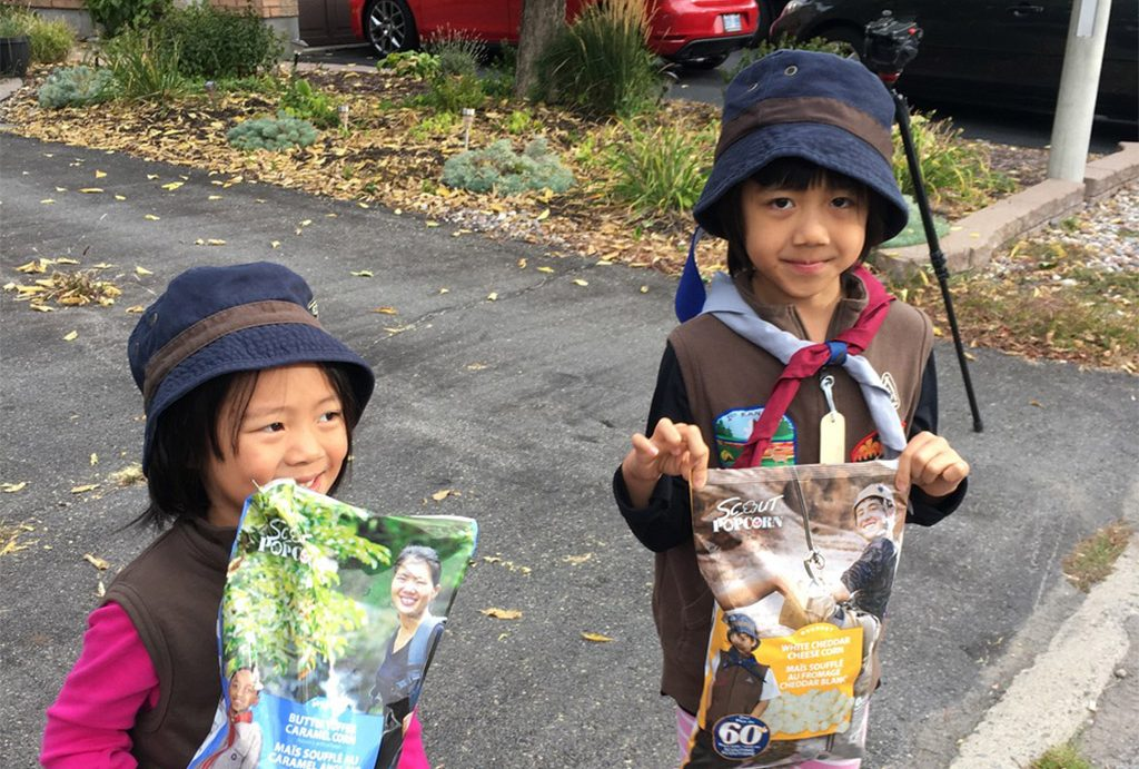 2016 Scouts Popcorn Campaign Review