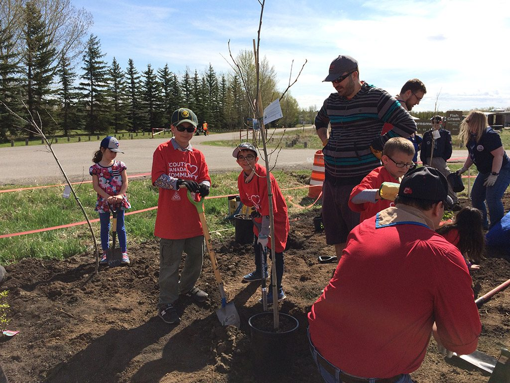 Group of Scouts planting trees
