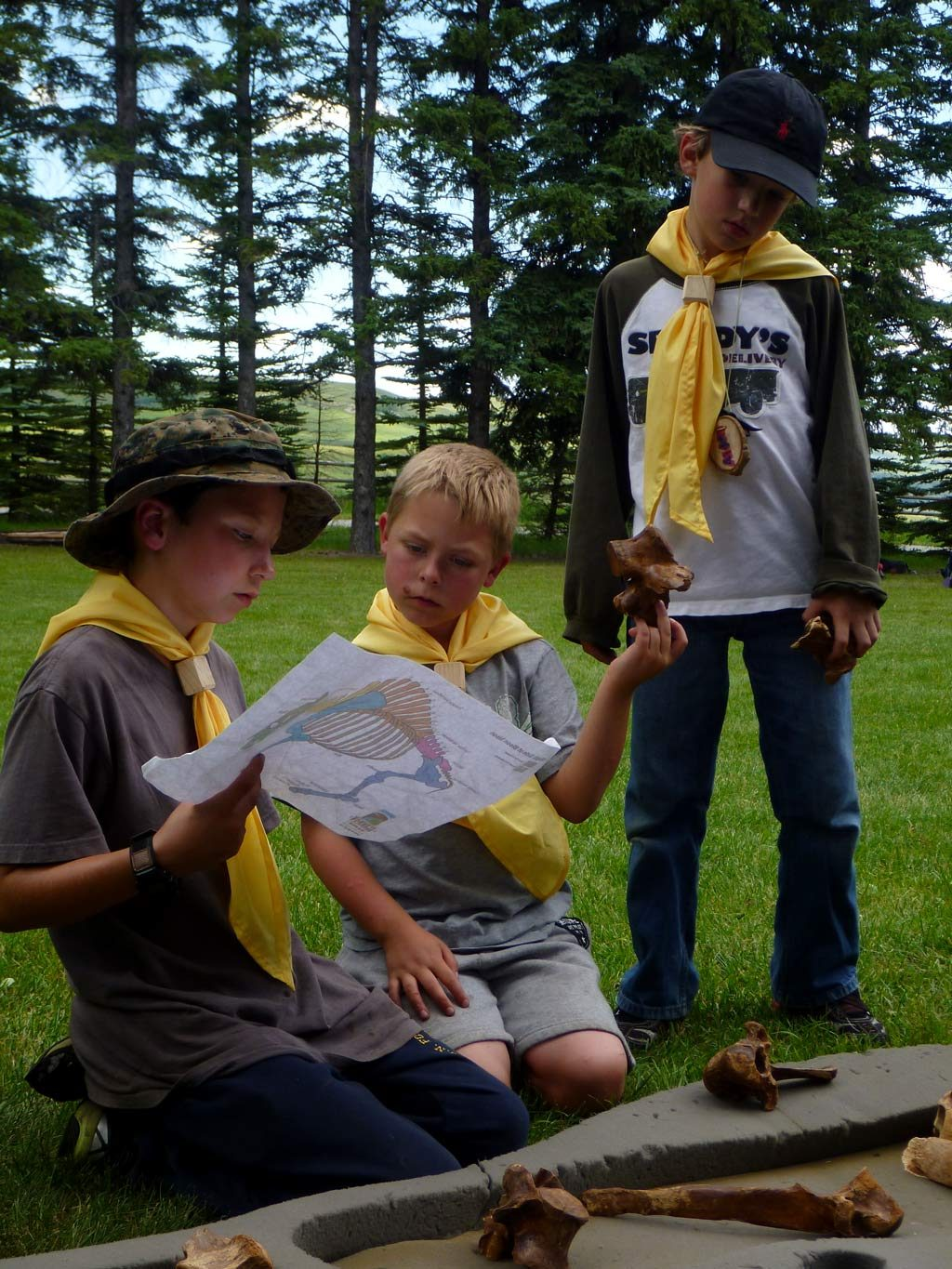 Scouts putting together dinosaur bones
