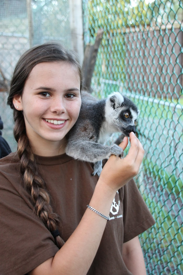 Katie G, a Safari Zoo Camper at Jungle Cat World with Guido, our 23 year old Ring - Tailed Lemur