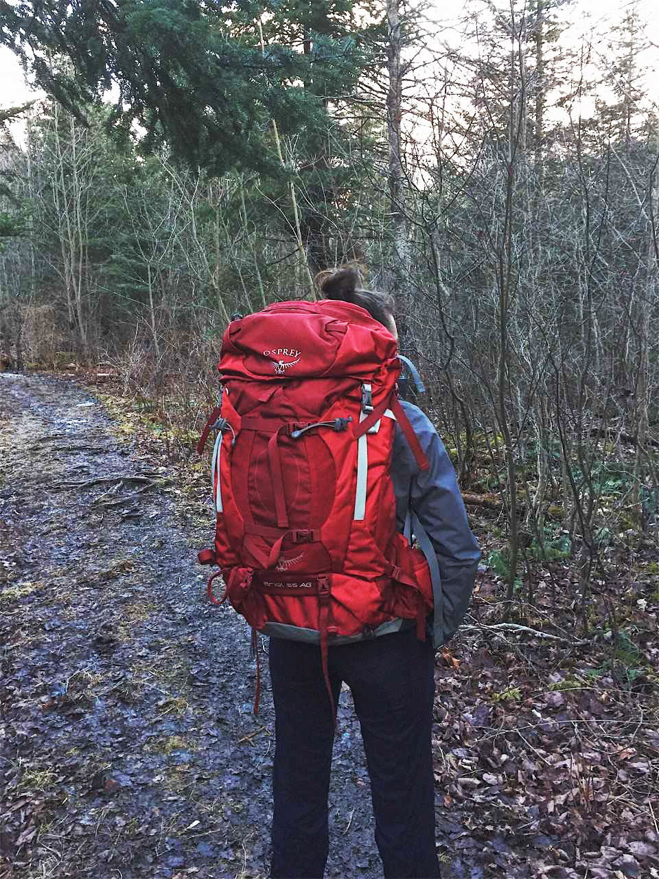 Gear Review of Osprey Backpack