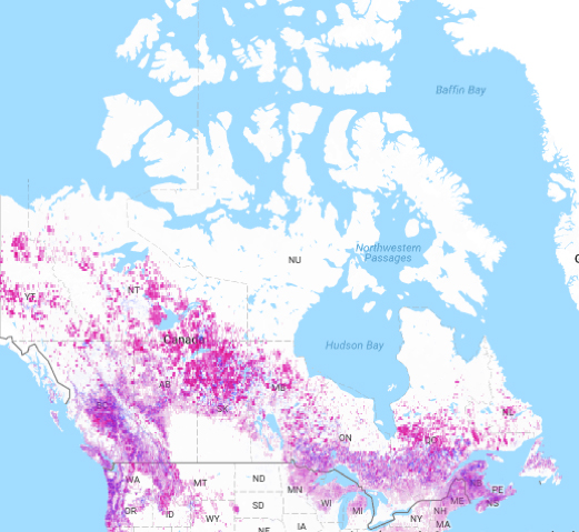Combined effects of deforestation and reforestation in Canada